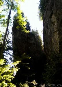 Ontario Climbing Fin